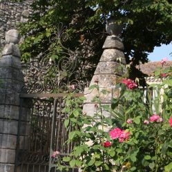 Roses and gates 1