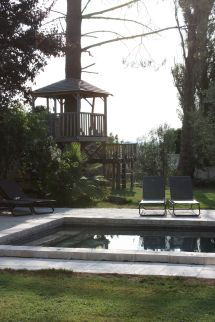 Treehouse pool 1