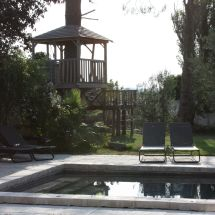 Treehouse pool 1