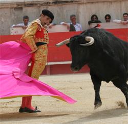 les_corridas_pave