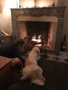 Christmas Contemplation Man and his Dog